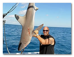 Click here to email us about our Florida sport fishing trips.