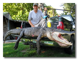 Click here to learn more about our gator hunt.