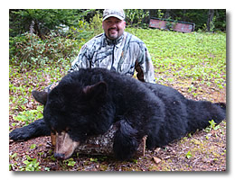 newfoundland black bear hunt
