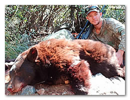 Click here to learn more about this black bear hunt.